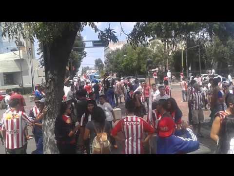 Previa de bombos y llegada de los del sur - Legión 1908 - Chivas Guadalajara - México - América del Norte