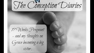 The Conception Diaries - 17 Weeks Pregnant