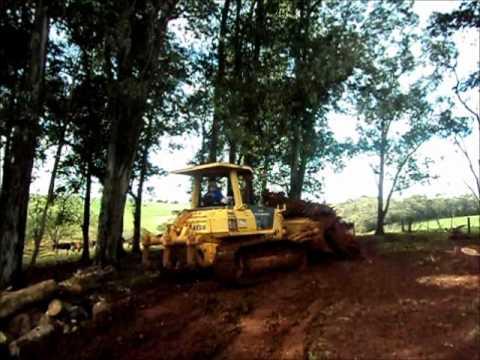 Esteira empurrando toco de eucalipto de +- 40 anos, - Nova Ramada-RS 2011