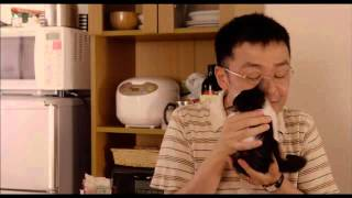 Nonton 映画『レンタネコ』特別映像 Film Subtitle Indonesia Streaming Movie Download