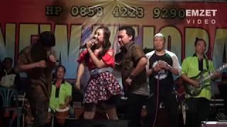 Video SUKET TEKI - NEW KEJORA Live SIRANGKANG MP3, 3GP, MP4, WEBM, AVI, FLV September 2018