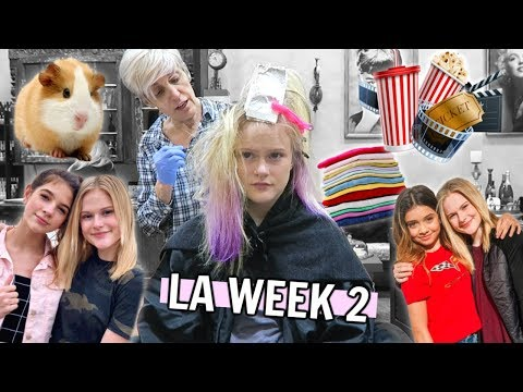 New hairstyle - LA WEEK 2  New Hair, Collabs, Moving In & MORE!