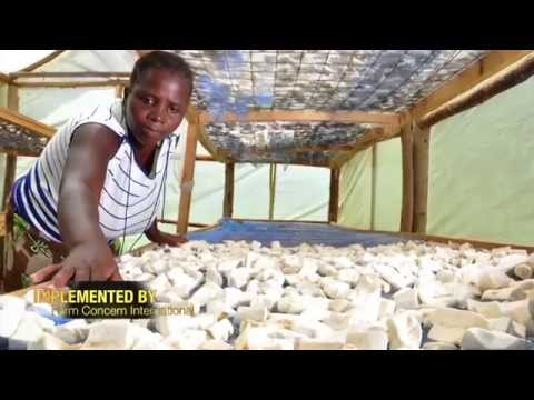 My Story: Petronila - Kenya