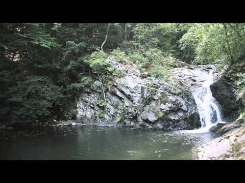Tekst piosenki Townes van Zandt - My Proud Mountains po polsku