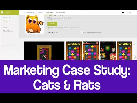 Video Game Marketing Case Study - Cats & Rats (mobile)