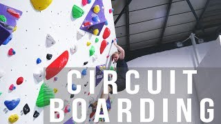 Louis Runs Over Circuit Boarding - What, Why, How. by Verticalife