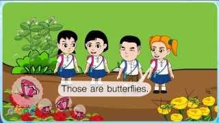 สื่อการเรียนการสอน Birds and insects ป.2 ภาษาอังกฤษ