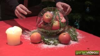 #921 Weihnachtsdekoration - Dekoglas mit Äpfeln (Redloves)