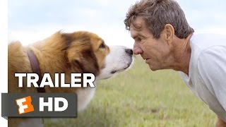 Nonton A Dog S Purpose Official Trailer 1  2017    Dennis Quaid Movie Film Subtitle Indonesia Streaming Movie Download