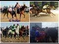 Sultan vs Tapado-El Gato Americano vs Kalimba