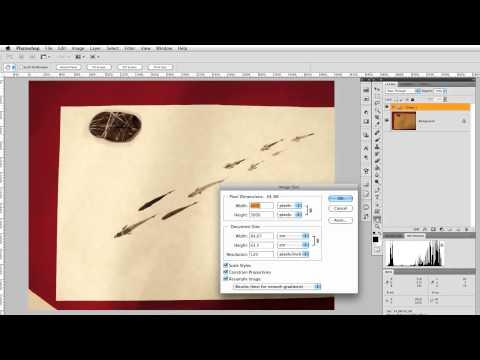 Photoshop CS5: Risoluzione e Dimensione di stampa