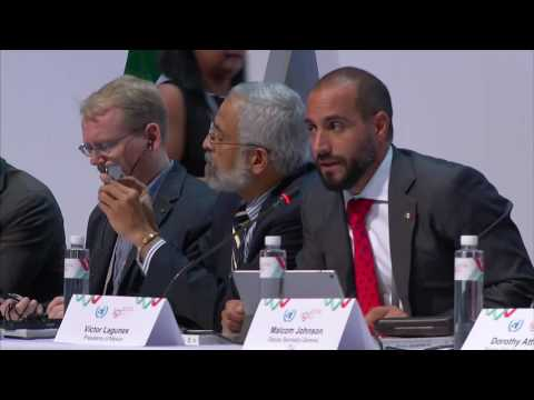 Host Country-Led Activities (High Level Meeting)