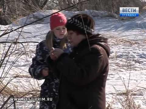 Специалисты природоохранных служб разбираются в ЧП на одном из водоемов Арсеньева