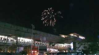 バンコク市内観光タイ国王誕生日を祝う花火