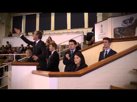 2014 Tattersalls October Yearling Sale Book 1: Day 2 Review
