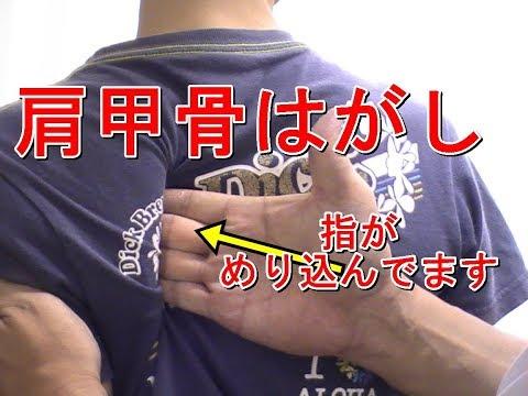 あなたの肩甲骨はどこまで入る!?肩甲骨のペアストレッチ