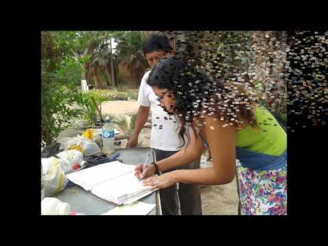 INTERVENCION DE ENFERMERIA EN SALUD AMBIENTAL