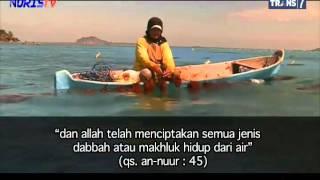 Download Video Khazanah  Adakah Jagad Lain di Alam Semesta MP3 3GP MP4