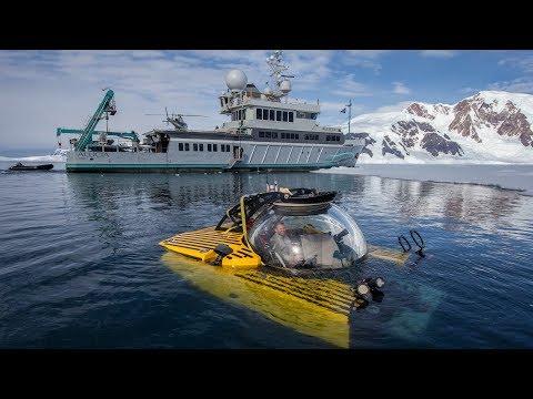Antarktyka 1000 metrów pod powierzchnią wody tętni życiem! Coś pięknego!