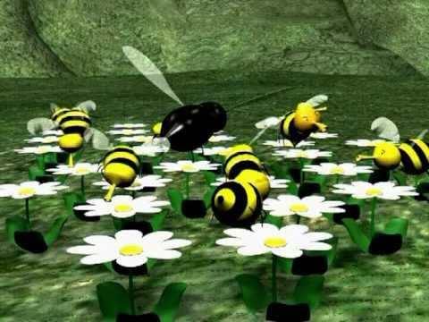 bee - This is my first animation short. It is the simple story of a bee searching for somthing different from the routine of his beehive.