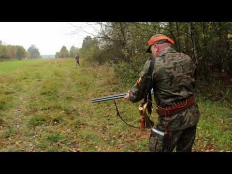 LAS WOKÓL NAS odc.8 - polowanie