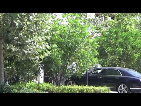 EXCLUSIVE - Ben Affleck's Ex-Girlfriend Lindsay Shookus Gives The Bentley Back!