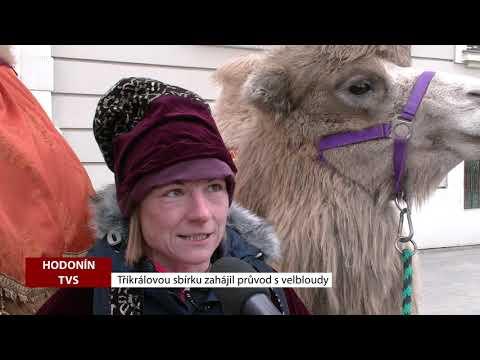 TVS: Deník TVS 7. 1. 2019
