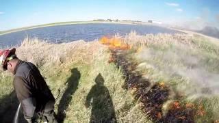 Badger Creek Australia  city images : Badger Creek Wildfire 2016 Spring RX