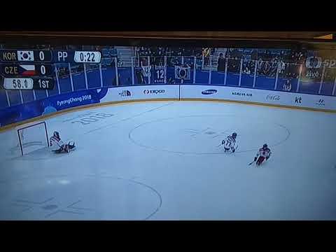 Sledge hokej:Česko - Korea    1 třetina