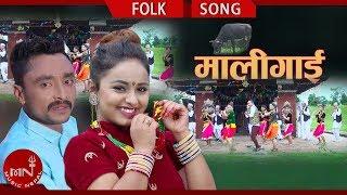 Mali Gai - Ramji Budhathoki & Bishwori Devi BK