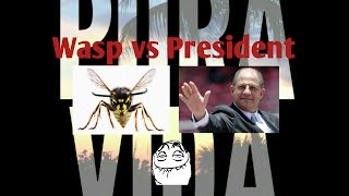 FUNNY MOMENTS President of Costa Rica eats a wasp while speaking a report I Jimmy Fallon