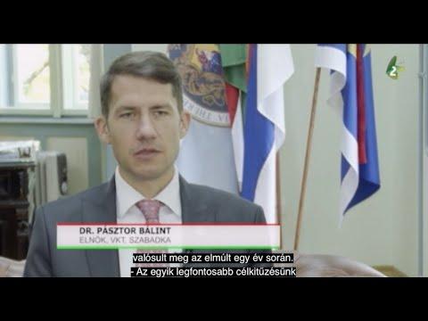 Interjú dr. Pásztor Bálinttal, a VMSZ alelnökével-cover