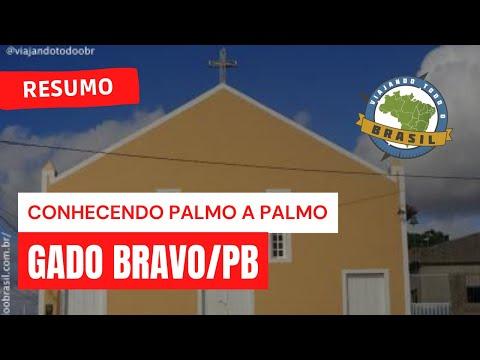 Viajando Todo o Brasil - Gado Bravo/PB