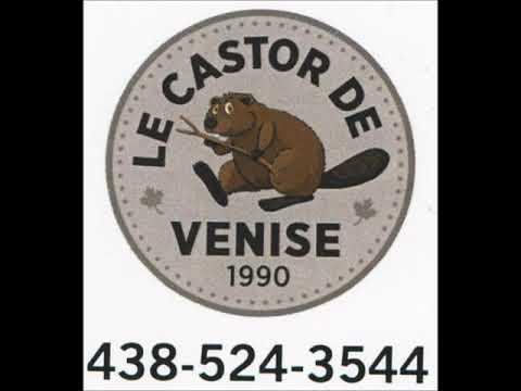 Le castor de Venise