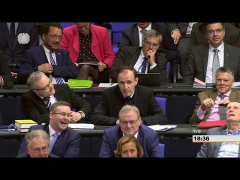 Bundestag - 22. Februar 2018 - AfD-Antrag zu Äußerungen von Deniz Yücel