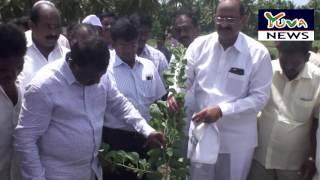 Video Poduru New PHC Land Pooja by Sri Kamineni Srinivas Rao MP3, 3GP, MP4, WEBM, AVI, FLV Oktober 2018