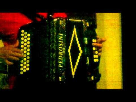 aula de concertina martinho