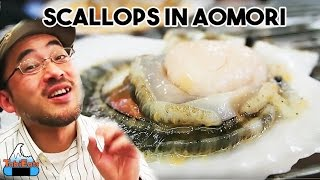 Aomori Japan  city photos : Fishing for Scallops in Aomori (JAPAN TRAVEL & FOOD)