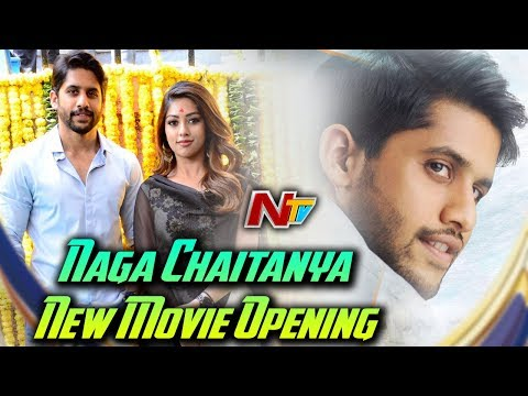 Naga Chaitanya New Movie Opening || Anu Emmanuel, Maruti || NC16