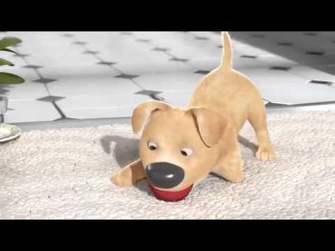 Animirani film koji će vas ostaviti bez teksta