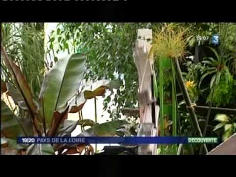 agrocampus - Reportage du 19-20 rgional de France 3 : expo flo 2010.