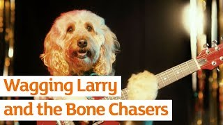 Wagging Larry and the Bone Chasers