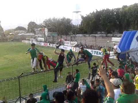 Furia Verde-Esto No Es Marathon Siendo Campeon,Es Marathon Perdiendo - Fúria Verde - Marathón