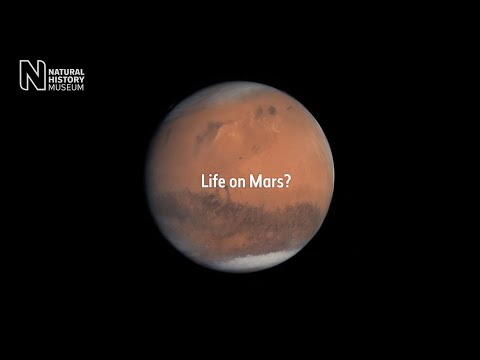 Could life have formed on Mars?
