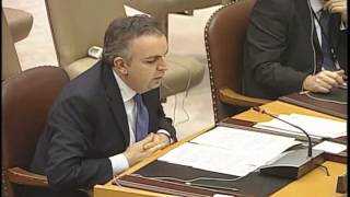 Garen Nazarian's speech at the United Nations Security Council, 2013