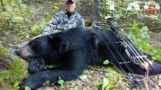 Video Bow Hunting Black Bear Northern Minnesota 2015 MP3, 3GP, MP4, WEBM, AVI, FLV Agustus 2017