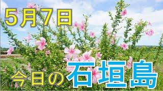 5月7日の石垣島天気