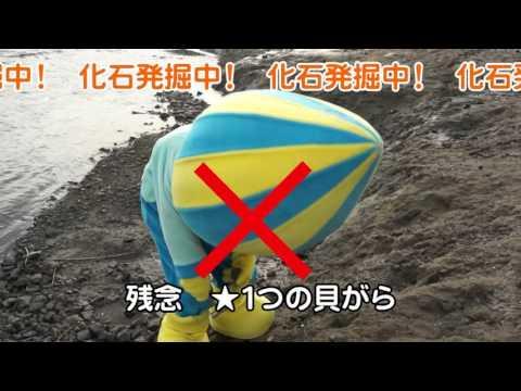 化石発掘体験!レアな化石を探せ!!編