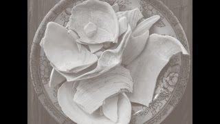 Download Lagu Bee Mask - Scanops Mp3