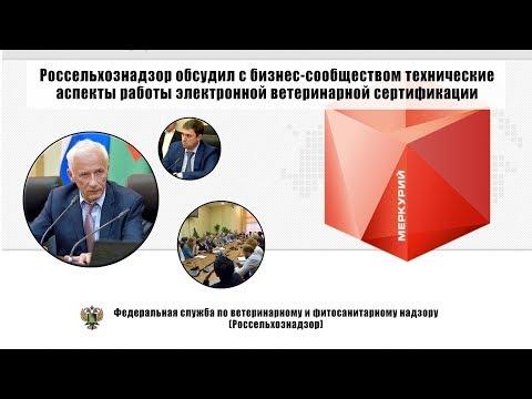 Россельхознадзор обсудил с бизнес-сообществом технические аспекты работы ЭВС